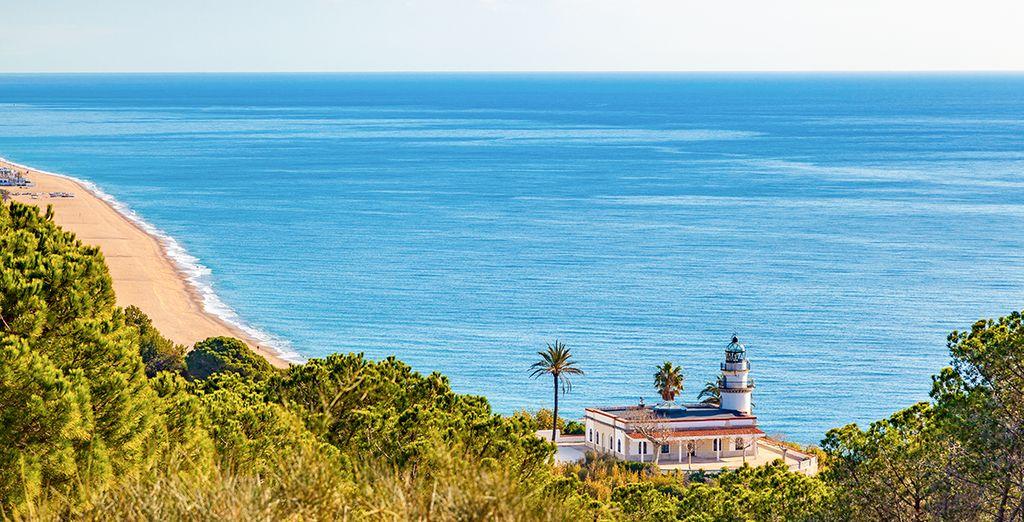 El Hotel Kaktus Playa te espera en Calella