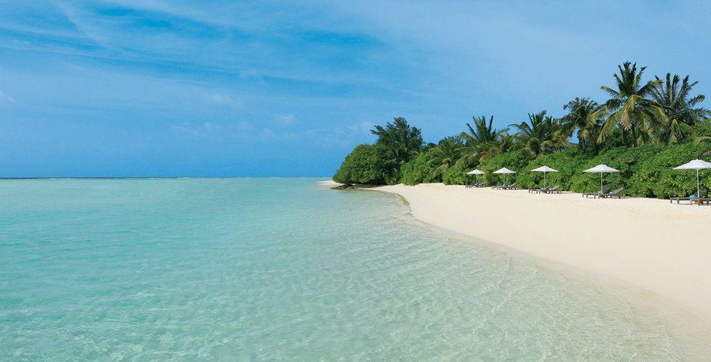 Las Maldivas te están esperando