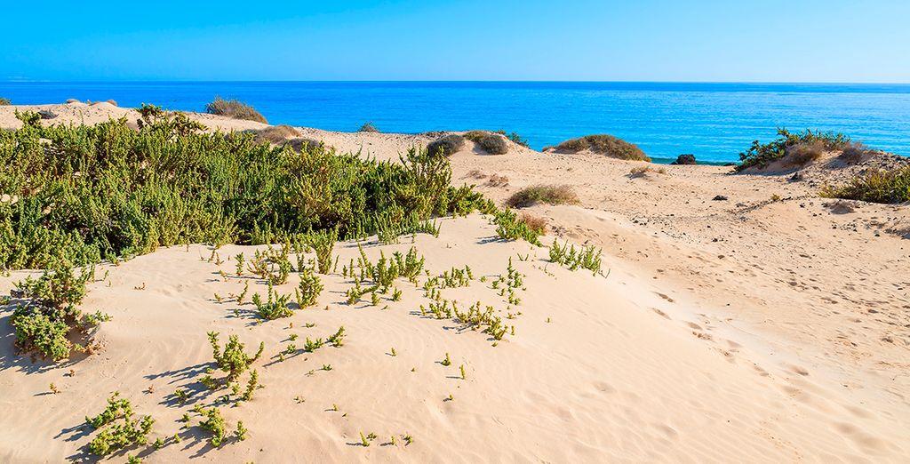 Aguas cristalinas y kilómetros de arena blanca te esperan