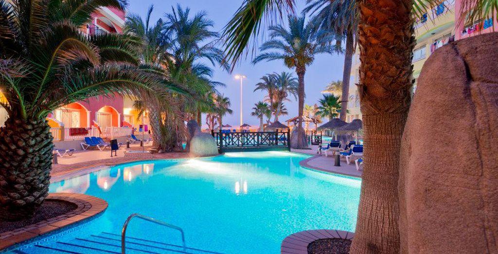 Una amplia zona de jardín, con gran cantidad de palmeras junto a la piscina