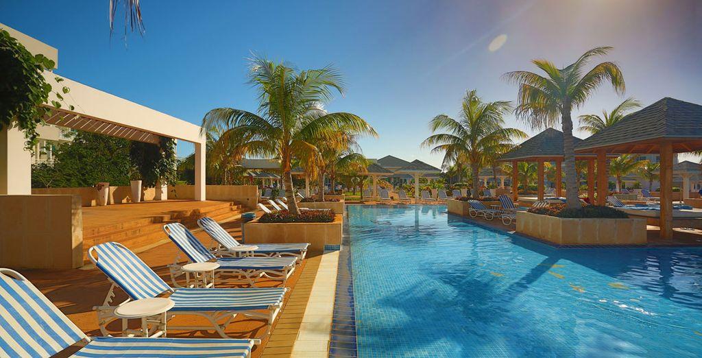 Toma el sol junto a la piscina