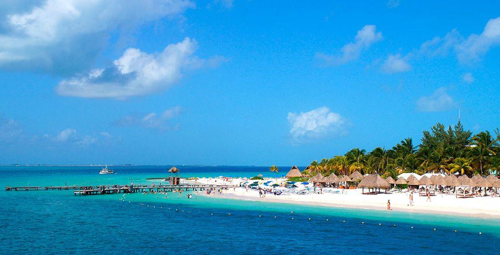 O bien reserva una excursión a Isla Mujeres...