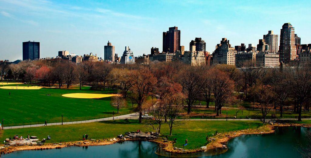 Disfruta de Central Park