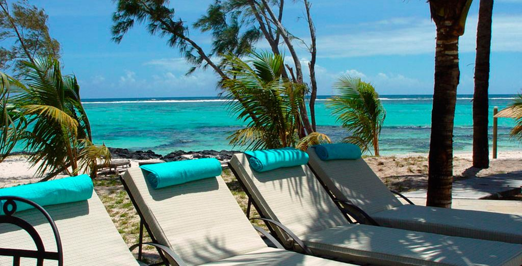 Las vacaciones de lujo que estabas esperando, ¡en pensión completa!