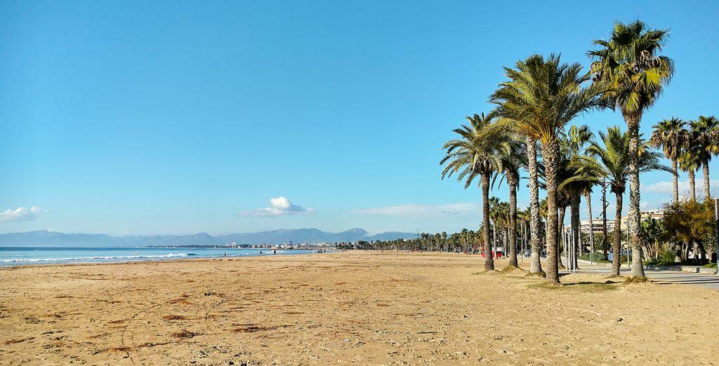 El clima mediterráneo te encantará... ¿Nos vamos?