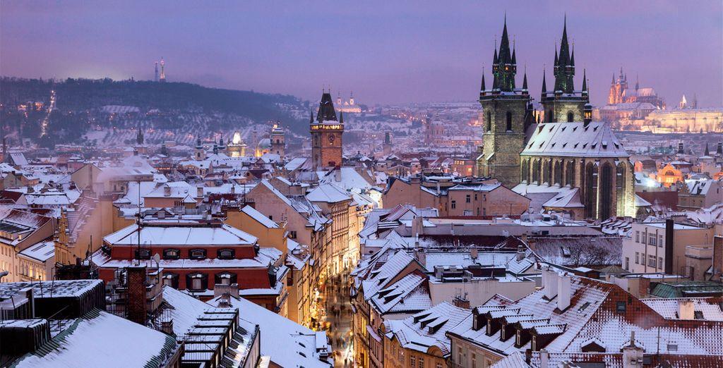 En esta época la ciudad está más bella que nunca