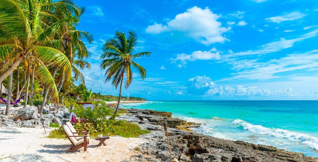 El paraíso sí que existe y se encuentra en México