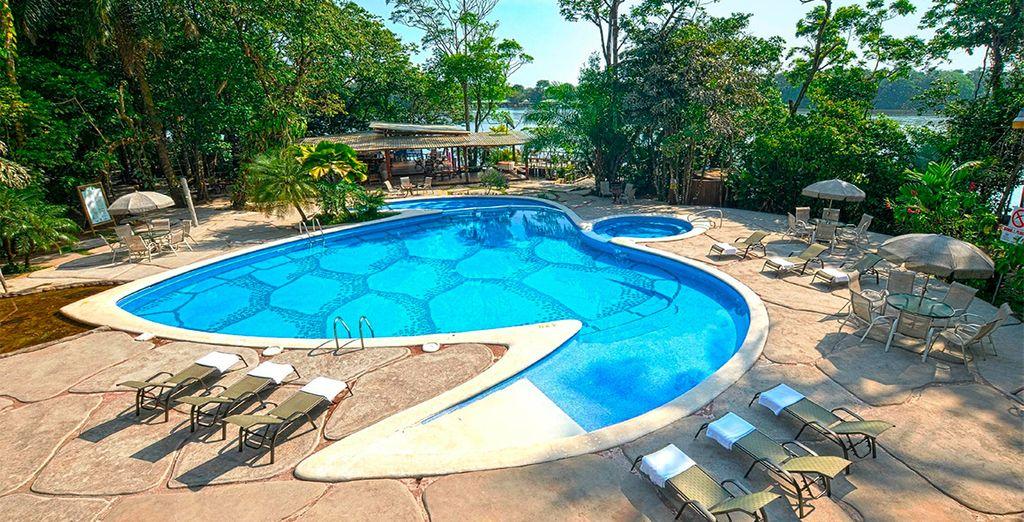 Pachira Lodge, tu hotel de Categoría Superior en Tortuguero