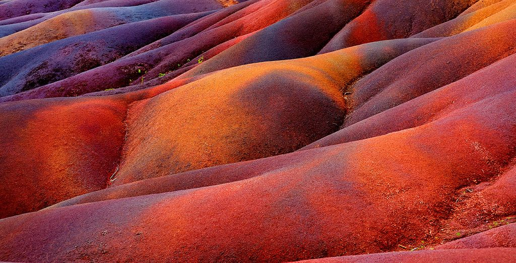 Bellos y hermosos colores tiñen sus tierras