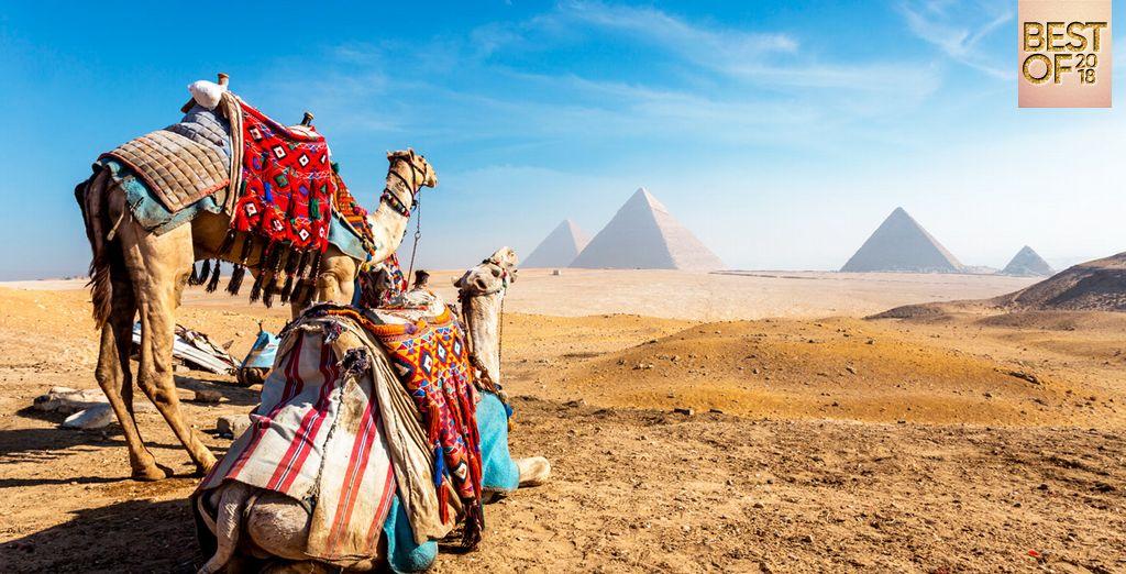Descubre Egipto con Hotel Marriott 5*