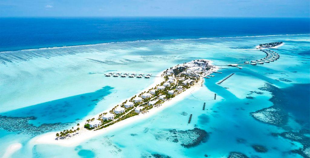 Riu Palace Resort 5*
