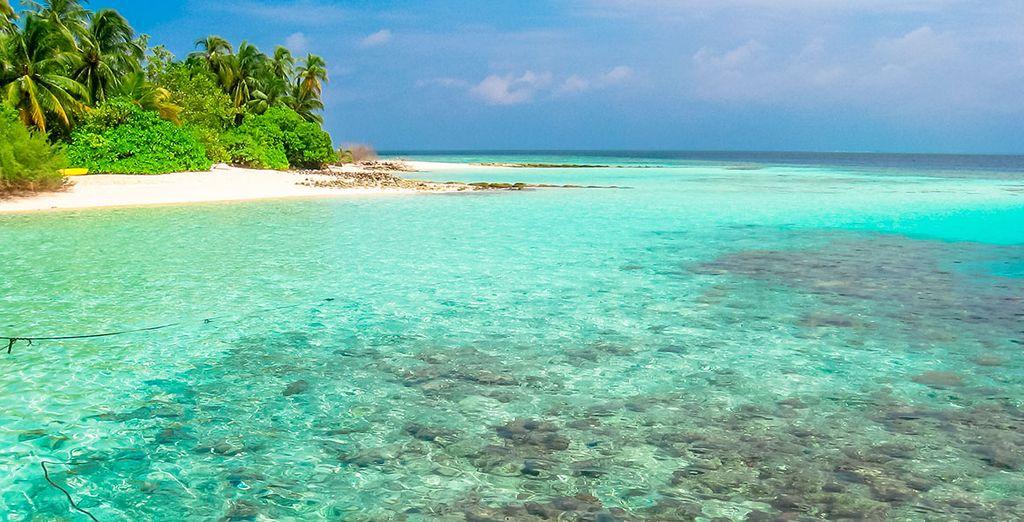 Disfruta de este paraíso de belleza extraordinaria