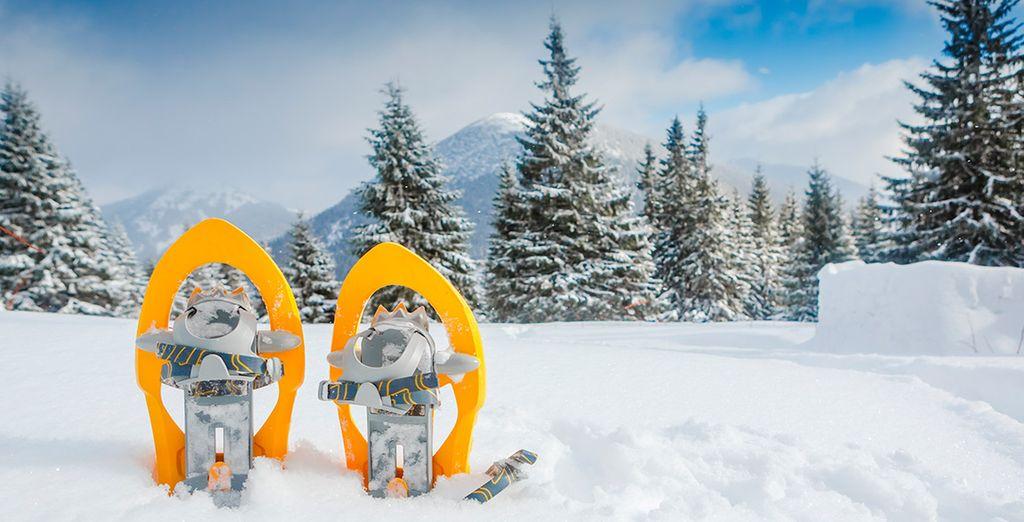 Dispondrás de 1 hora de alquiler de raquetas de nieve por cada noche de estancia