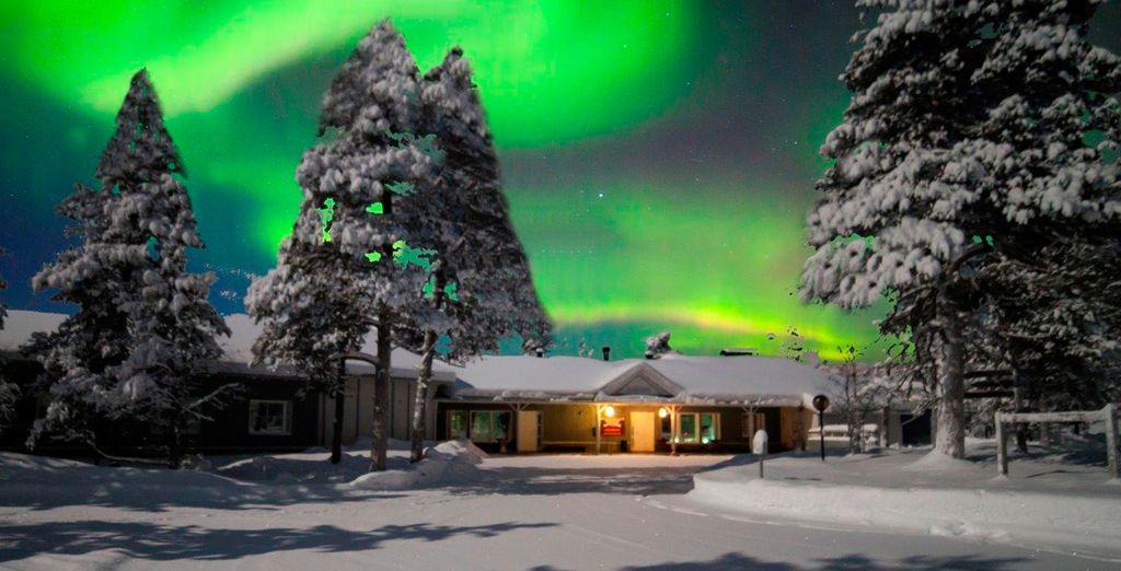 Se alojará en Wilderness Lodge Muotka