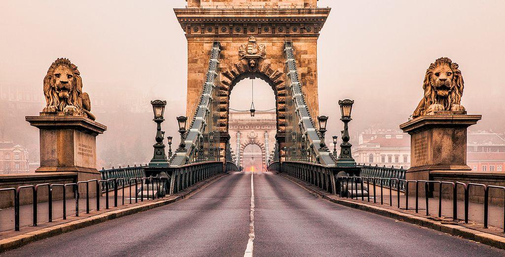 Enormes puentes unen ambas orillas