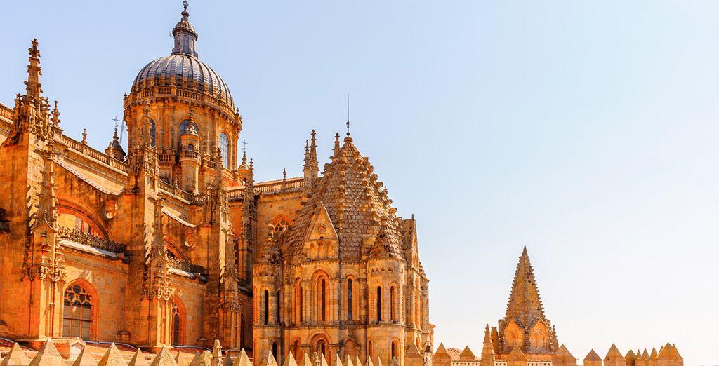 Visita su catedral