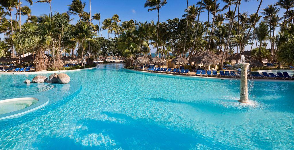Disfrute de unas vacaciones inolvidables en una isla paradisíaca