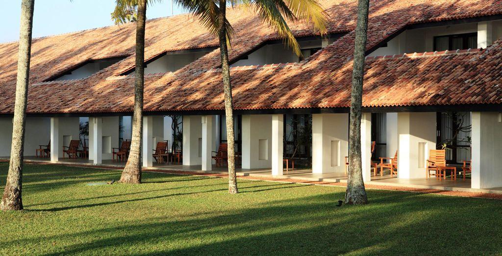 Disfrute de la naturaleza que envuelve el resort