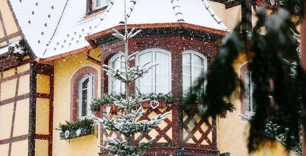 El invierno ha llegado a Estrasburgo