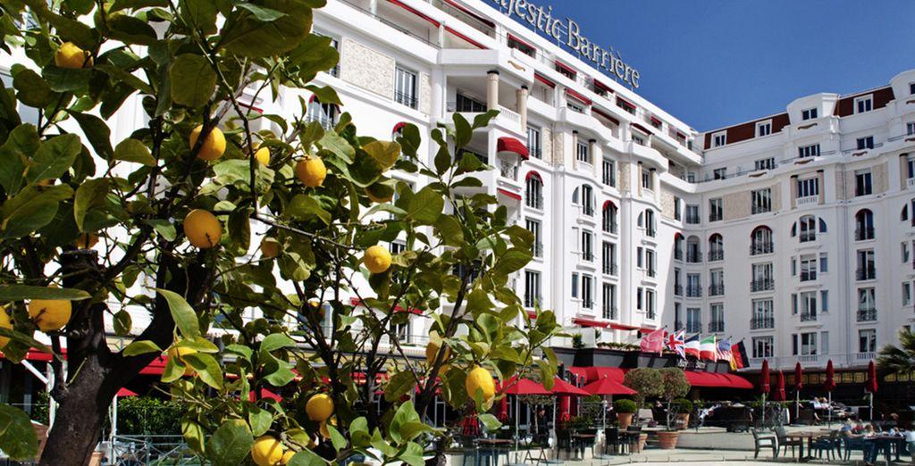 Alójate en un hotel ubicado en el centro de Cannes