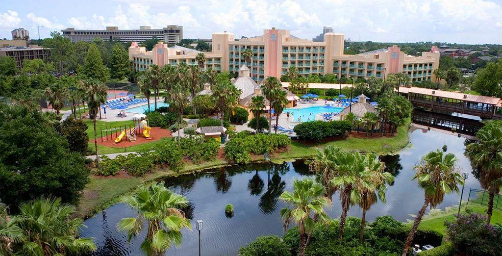 Este hotel cuenta con 3 piscinas donde se podrá relajar