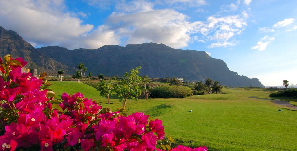 Venez vite découvrir les paysages des Canaries