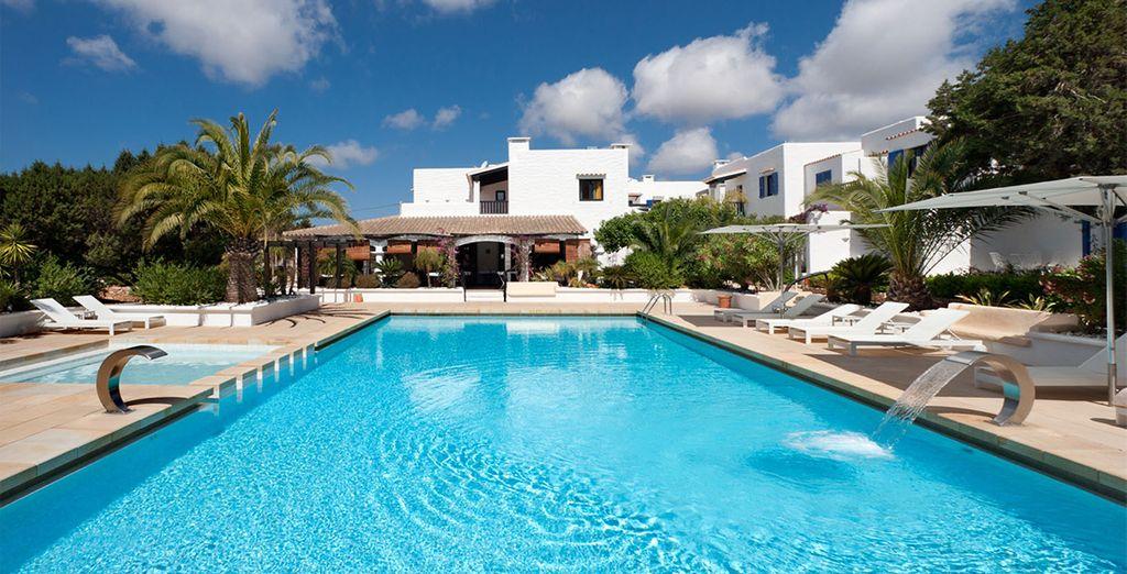 Bienvenue au Paraiso de los Pinos... - Hôtel Paraiso de los Pinos 4* Formentera