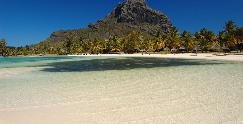 Vous voilà parti pour un voyage entre aventure et farniente sur deux îles complètement magiques...