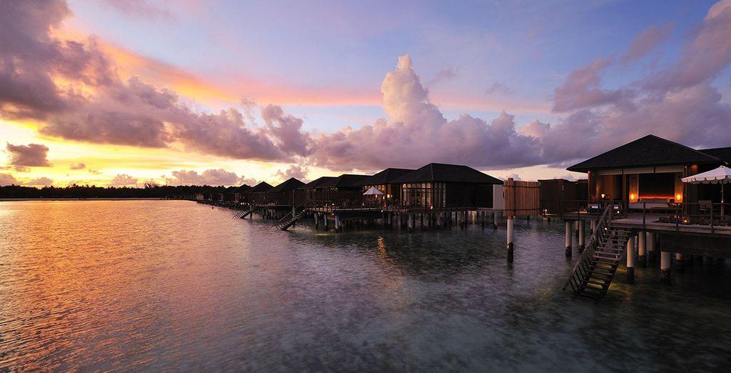 Installez-vous au Paradise Island Resort