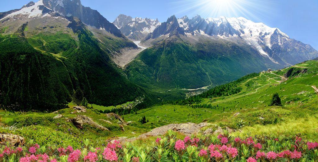 Situé au coeur de l'environnement enchanteur des Arcs 1800