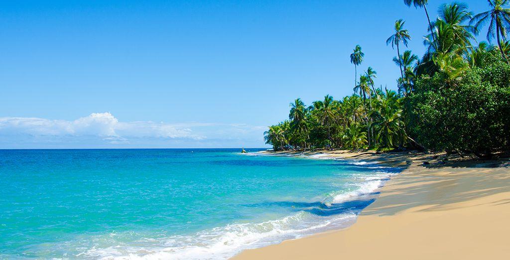 Aux plages de rêve