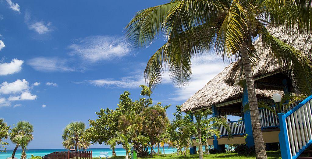 Un resort authentique en front de mer