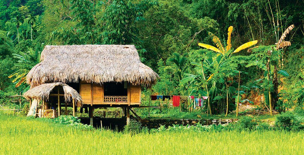 Simplicité et richesse culturelle