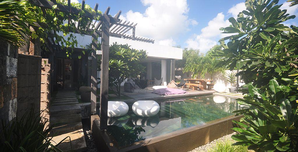 La terrasse et son ambiance tropicale
