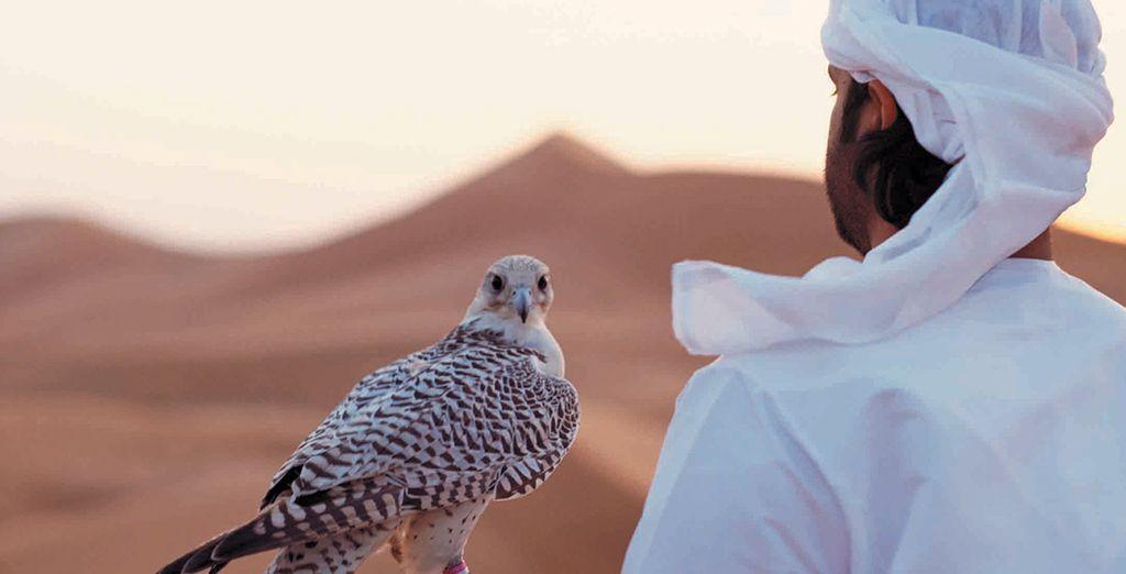 Préparez-vous à vivre une aventure inédite dans le désert