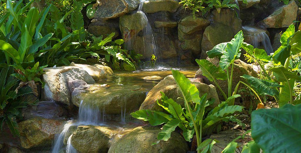 De somptueux jardins naturels vous attendent au sein du domaine...