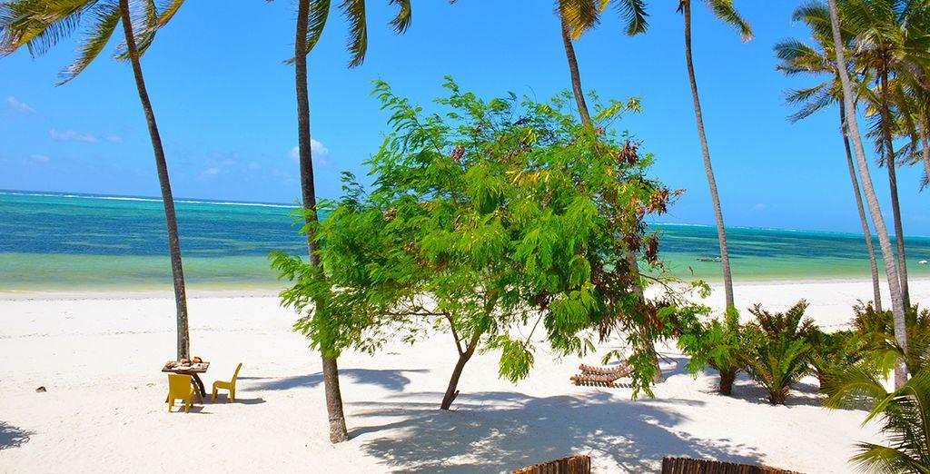 Ici, tout n'est que calme et volupté... - Indigo Beach Zanzibar 4* Zanzibar