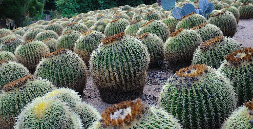 les Jardins botaniques de Cap Roig