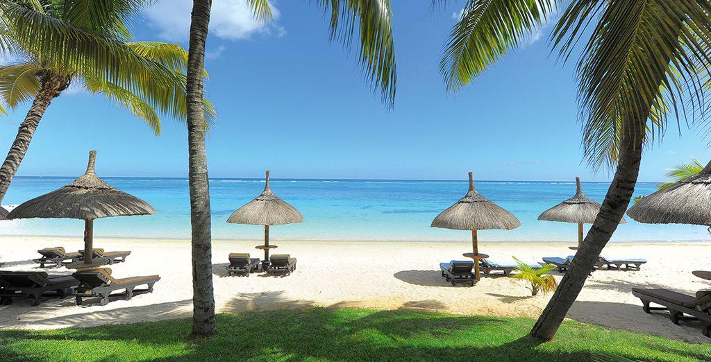 Lové sur la plus belle plage de l'île Maurice