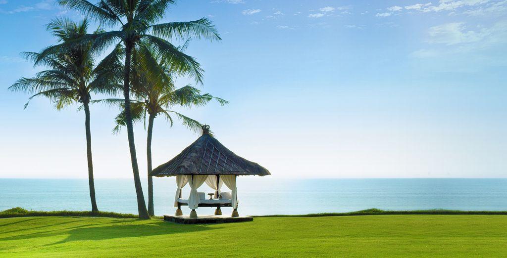 Dans un endroit paradisiaque, face à l'océan...