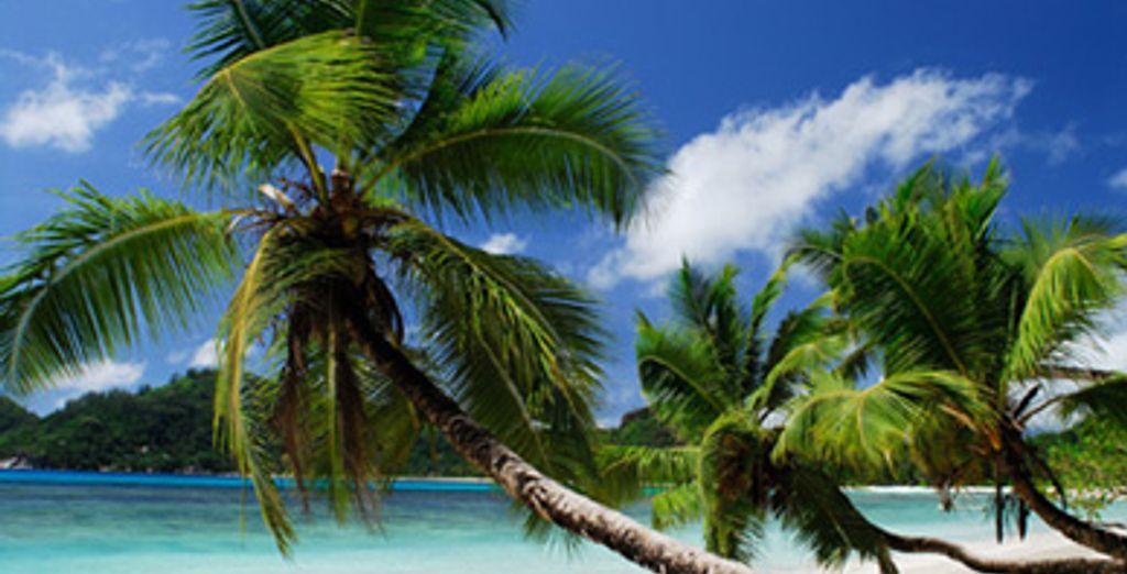 - Méridien Barbarons **** - Mahé - Seychelles Mahe Island