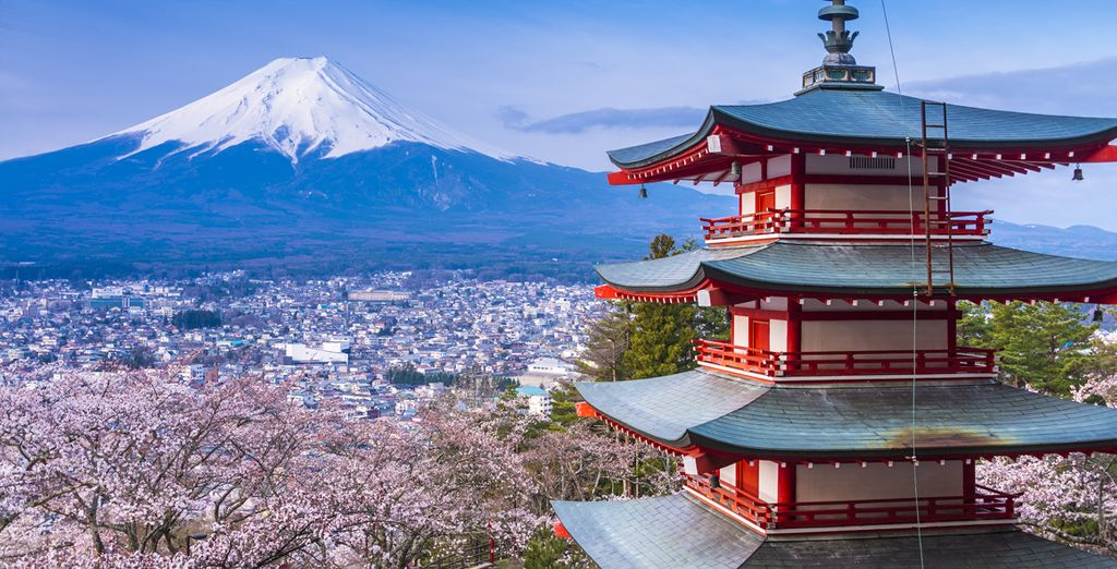 voyage japonais