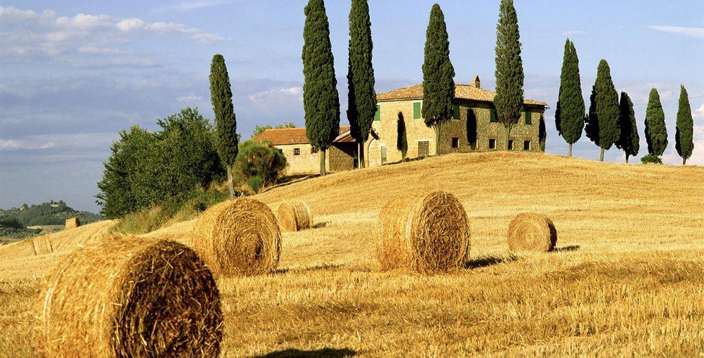 Bienvenue en Toscane... - Villa La Grotta 4* San Giustino Valdarno