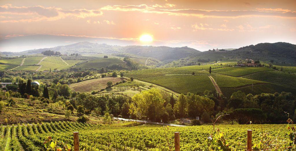 Puis cap sur la Toscane, ses paysages verdoyants, ses vignobles, son calme