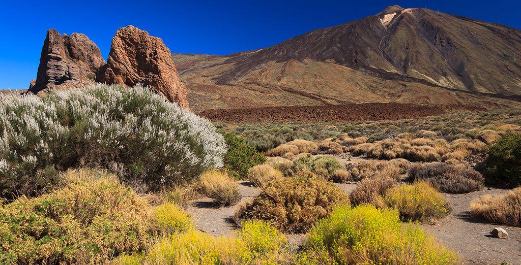 Découvrez l'étonnant parc du Teide
