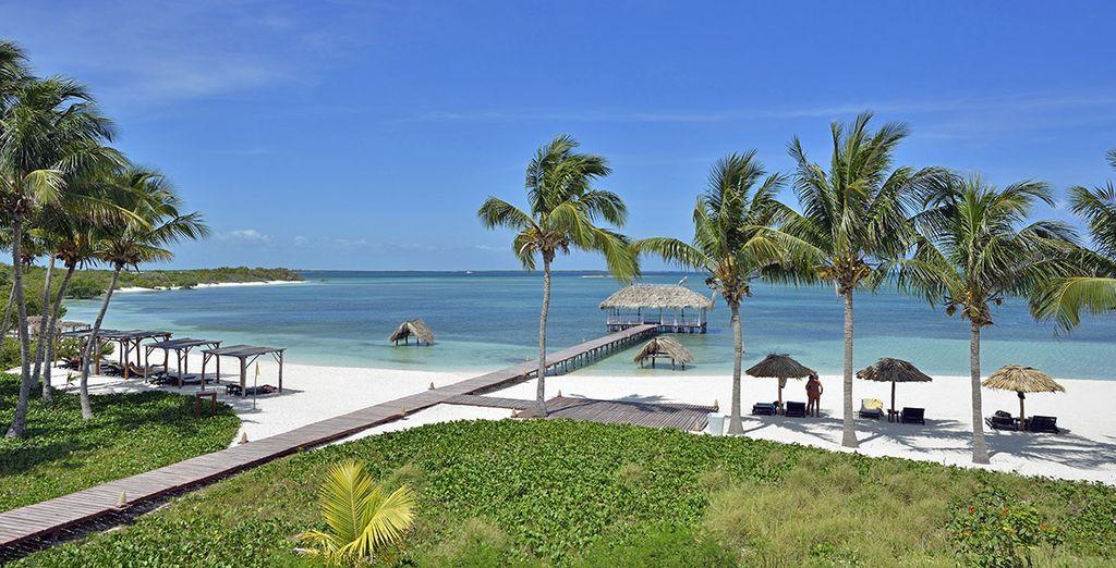 Bien au delà des clichés cubains, l'île est aussi un paradis aux plages sublimes
