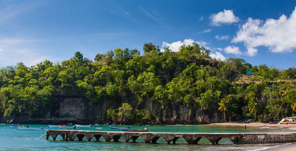 Au bord de plages magnifiques, vos vacances fileront à toute allure