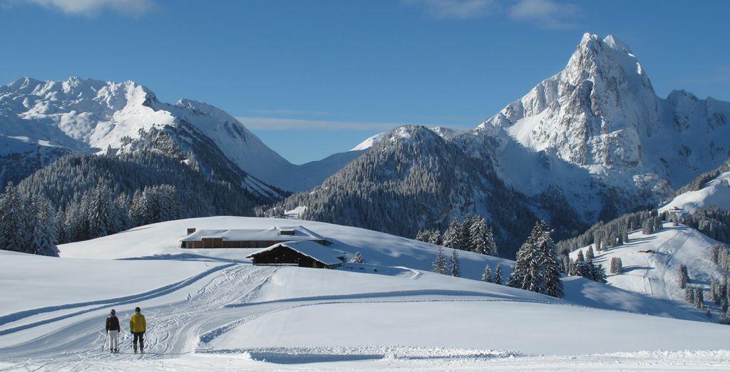 Les Alpes suisses n'attendent que vous !