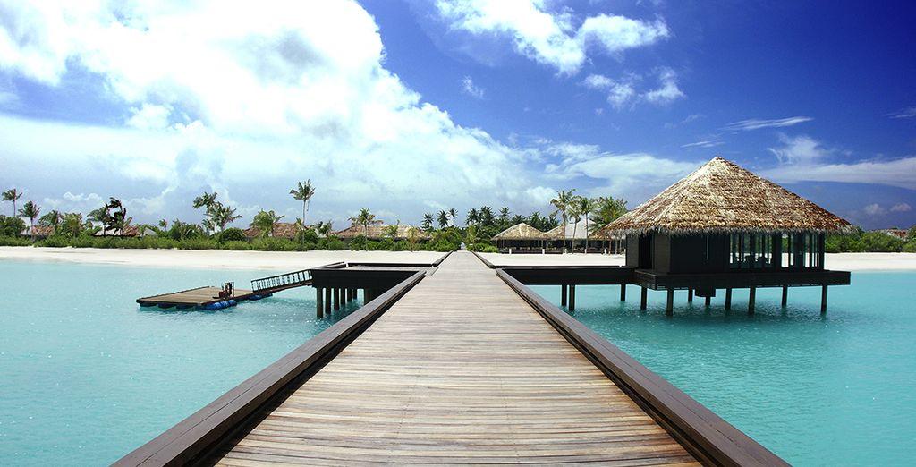 Envie de partir au bout du monde... - Zitahli Resort & Spa Kuda-Funafaru 5* Malé