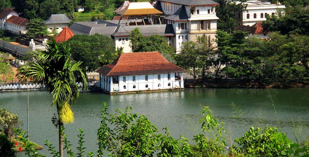 Partez ensuite pour la ville de Kandy et ses contrastes...